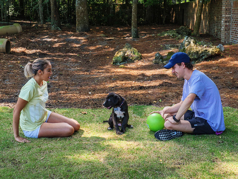 Two people playing with their dog in the pet friendly dog park